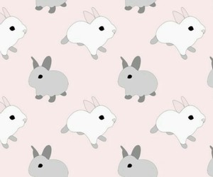 background, animal, and pattern image
