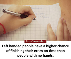 facts, funny facts, and unknown facts image