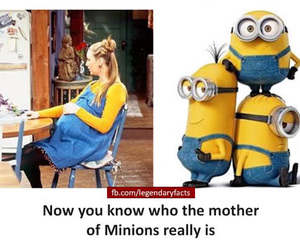 facts, funny facts, and unbelievable facts image