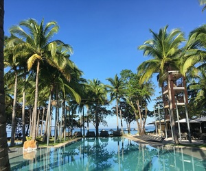 adventure, palm trees, and pools image