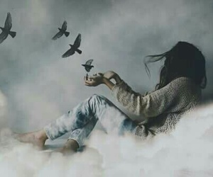 birds, sky, and free image