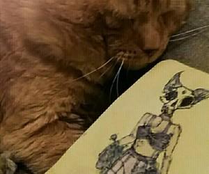aesthetic, cat, and creepyyeha image