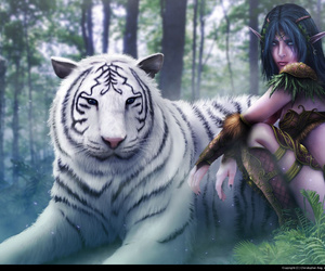 tiger and world of warcraft image
