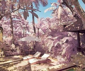 beautiful, holiday, and pink image