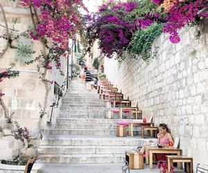 flowers, Croatia, and travel image