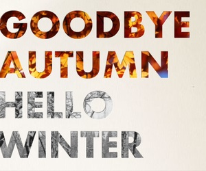 winter, autumn, and quote image