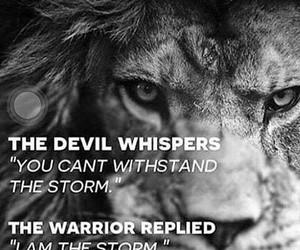lion, motivation, and positive image