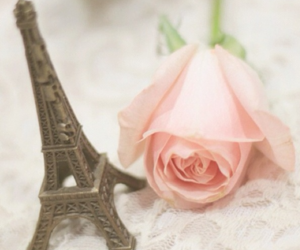 eiffel tower, rose, and paris image