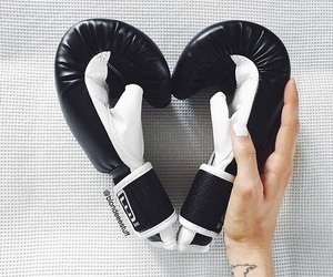 boxer and gloves image