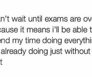 tumblr, exams, and funny image