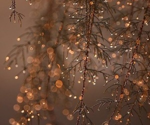 christmas, cold, and droplets image