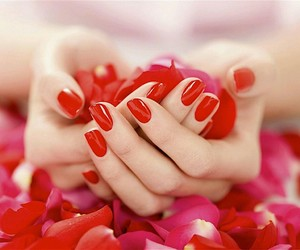 red, nails, and rose image