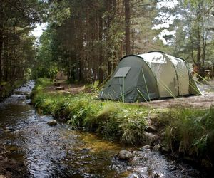 camping, forest, and river image