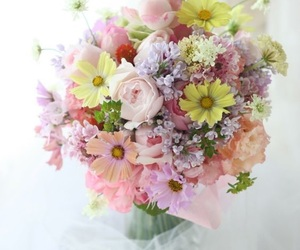 flowers and romantic image