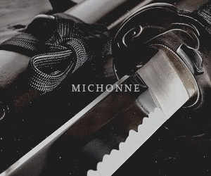 aesthetic, the walking dead, and michonne image