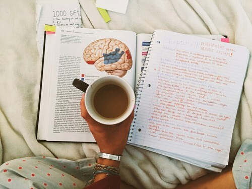 book, school, and studying image