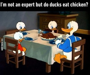 funny, Chicken, and disney image