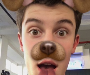 shawn mendes, shawn, and dog image