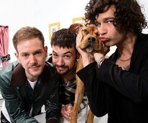 the 1975, adam hann, and puppy image