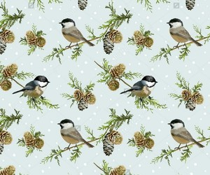 background, birds, and cold days image