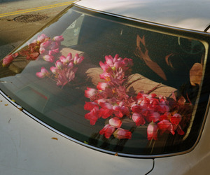 car, flower, and flowers image