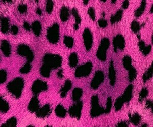 pink-animal prints- image