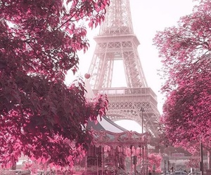 pink, paris, and flowers image