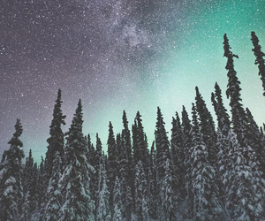 stars, forest, and photography image