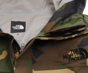 north face image