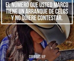 amores, banda, and corridos image