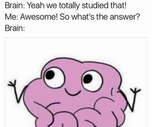 brain, me, and studying image