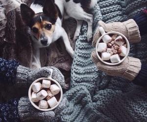 winter, dog, and christmas image
