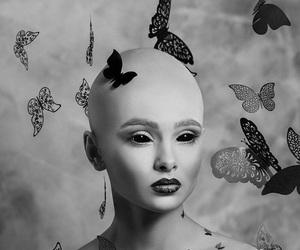 b&w, beautiful, and butterflies image