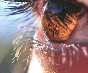 brown eyes, life, and photography image