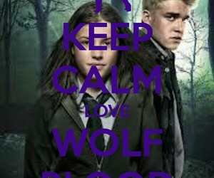 wolf and wolfblood image