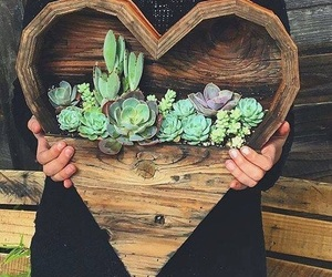 heart and plants image