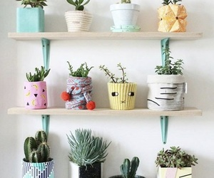 cute, plants, and cactus image