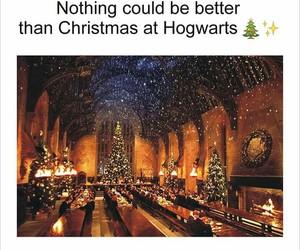 christmas, lights, and harry potter image