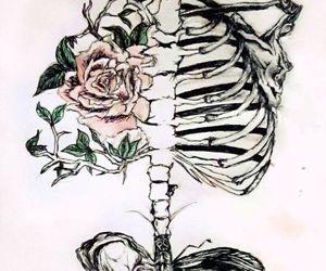 skeleton, flowers, and art image