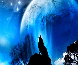blue, wolf, and moon image