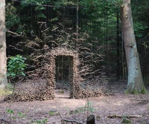 art, forest, and nature image
