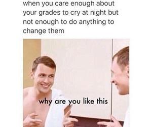 meme, school, and stress image