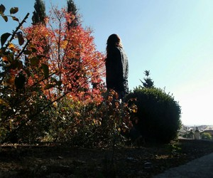 autumn, girl, and trees image
