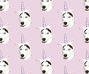 dog, pattern, and unicorn image