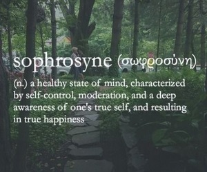 quotes, sophrosyne, and happiness image