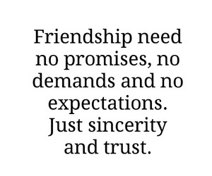 friendship, quote, and sincerity image