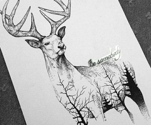 animal, deer, and drawing image