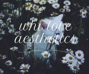 aesthetics, easel, and we heart it image