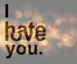 love, hate, and i hate you image