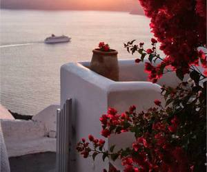 flowers, Greece, and sea image
